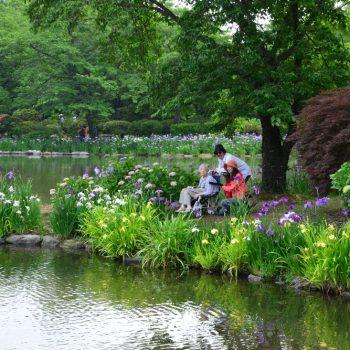 緑水苑賞:「愛の花園」撮影:土田昇一
